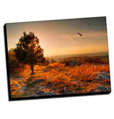 Image of Canvas Print 40 x 30 Gallery Wrap