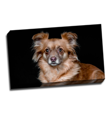 Image of Canvas Print 20 x 12 Gallery Wrap
