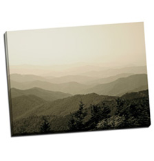 Image of Canvas Print 48 x 36 Gallery Wrap